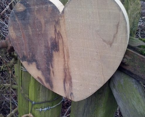 despite the symbolism, a heart of wood is a beatiful thing